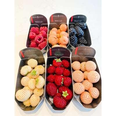Beekersberries Mixed Berries