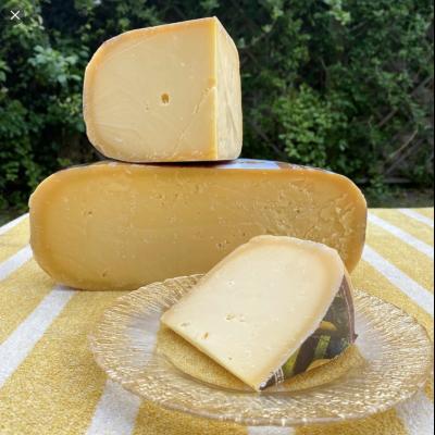 Aged Gouda Schorren Cheese