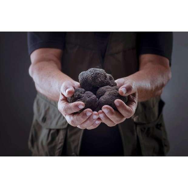 Fresh Black Winter Truffle - AUS