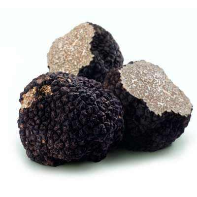 Fresh Black Summer Truffle  (Tuber aestivum)