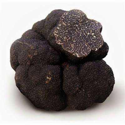 Fresh Black Winter Truffle  (Tuber Melanosporum) - Manjimup